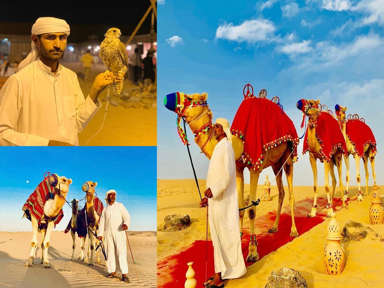 Dubai-Desert-Safari-Gallery-1